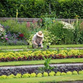 Pourquoi faire appel à un jardinier pour entretenir votre jardin
