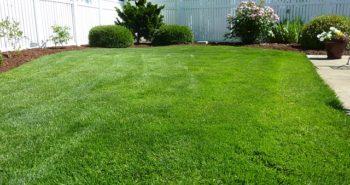 Ce que vous deviez savoir concernant l'entretien du jardin