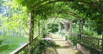 Quelques conseils pour aménager un jardin ombragé