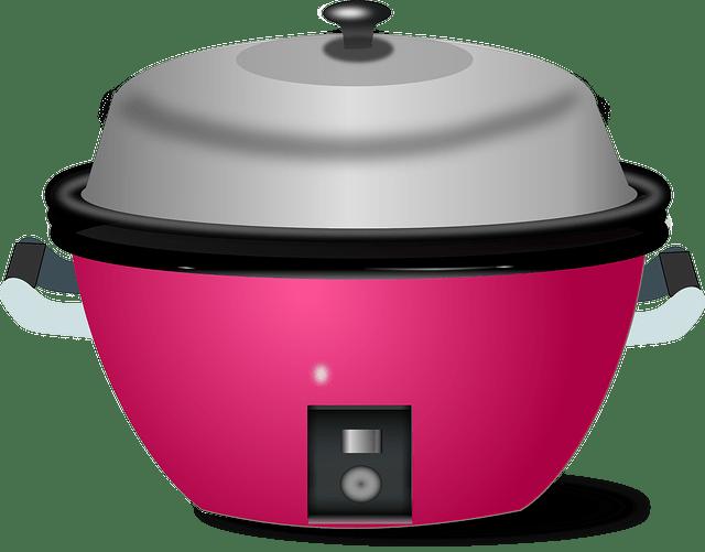 Les critères pour choisir son appareil de cuisson